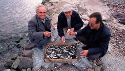 Kunden, die gerade bei Theoni Kolias frischen Fisch gekauft hatten. (c) Tobias Schorr 1991