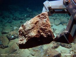Rock sample collected by the submarine robot. (c)GEOMAR Helmholtz-Zentrum für Ozeanforschung Kiel