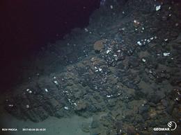 Unterseeischer Felsen (etwas farbkorrigiert) der Fließstrukturen zeigt(?) Vulkanischer Felsen, in den sich ein Fischernetz verwickelt hat.(c)GEOMAR Helmholtz-Zentrum für Ozeanforschung Kiel
