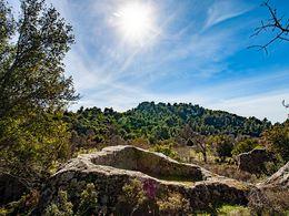 Eine riesige, aus dem Felsen gehauenen Weinpresse, wie wir sie nur einmal in dieser Größe auf Methana entdeckt haben. (c) Tobias Schorr