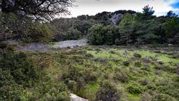 Die Hochebene um den Chelona-Gipfel. Hier liegt ein mysteriöses, antikes Heiligtum. Vielleicht das Haus der mythischen Aithra? (c) Tobias Schorr