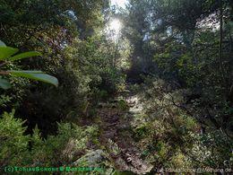 Der Wanderweg führt durch kleine Wäldchen, in denen man von März-Nai schöne Orchideen findet. (c) Tobias Schorr