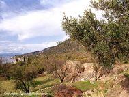 Die Innenmauern der Akropolis (c) Tobias Schorr