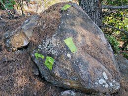 Grüne Markierungen. (c) Tobias Schorr