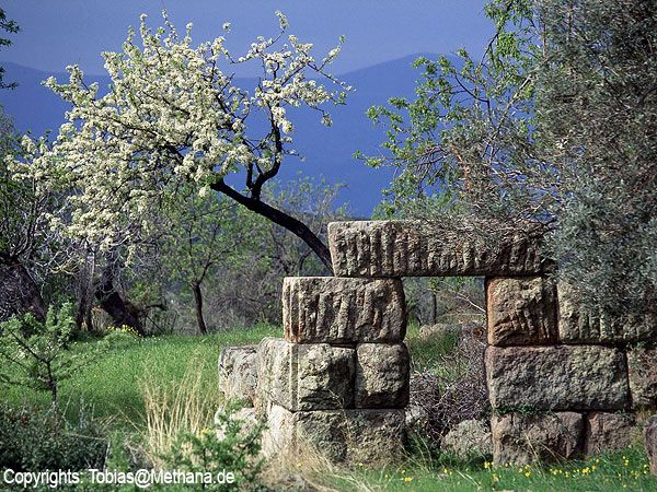 The ancient tower in spring 1996