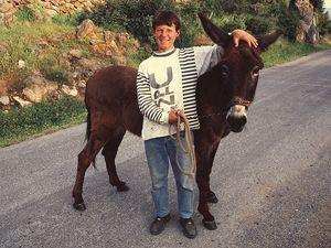 Ein Junge aus Megalochori. Statt mit dem Motorrad, ist er mit dem 4x4 getriebenen Esel unterwegs