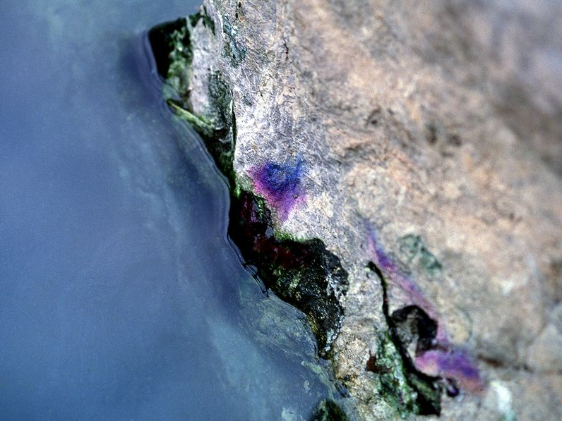 Biofilm am Thermalwasserausfluß. (c) Tobias Schorr 1996