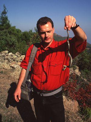 Tobias Schorr mit einer ungiftigen Leopardnatter in den Bergen von Methana