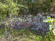 Auf unserer Tour besuchten wir auch die Reste eines geometrischen Tempels. Man fragt sich schon, wieso Methana bei Archäologen so wenig bekannt ist?