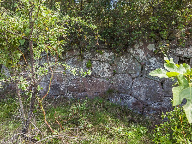 Die polygone Mauer des geometrischen Tempels oder eines Herrschaftsgebäudes bei Kounoupitsa. (c) Tobias Schorr