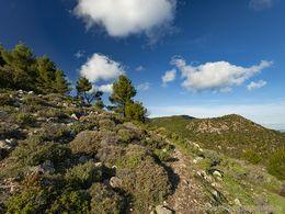 Blick auf das Vulkangebirge von Methana. (c) Tobias Schorr