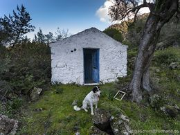 "The chapel Agios Andreas with the dog ""Tenekes"". (c) Tobias Schorr"