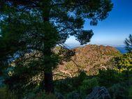 Besuch des historischen Vulkans von Kameni Chora