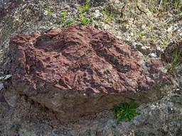 Hornsteinlinse zwischen Ophiolithen. (c) Tobias Schorr