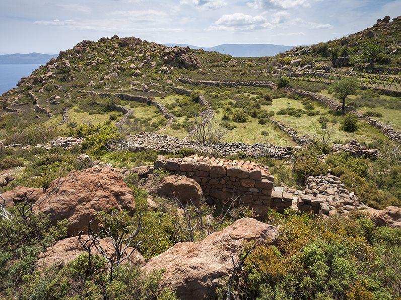 Ancient farming site on Tsonáka lava flow. (c) Tobias Schorr