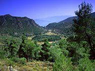 Η κοιλάδα του ηφαιστείου Σταυρολόγγου τον Ιούνιο 1996. (c) Tobias Schorr