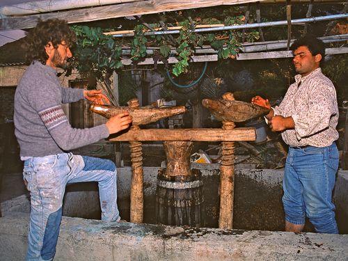 Jimmy und Takis an einer uralten Weinpresse in Vathy (c)Tobias Schorr