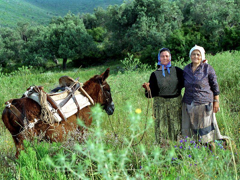 Theoni Kolias und ihre Mutter auf den Feldern bei Kounoupitsa. Foto ca. 1991. (c) Tobias Schorr