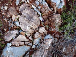 In Störungen haben sich oft schöne Bänder aus Kalzitkristallen abgelagert. (c) Tobias Schorr