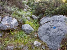 Der Pfad der blauen Route von den Bädern hoch zum Asprovouni-Gipfel. (c) Tobias Schorr