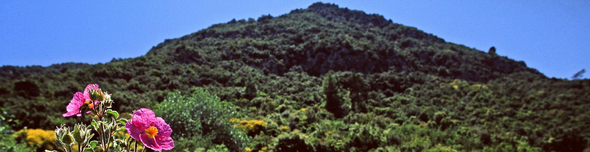 Malisa volcanic massif at Kounoupitsa